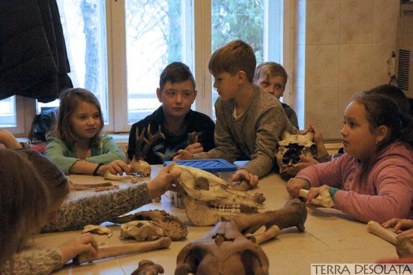 Dzieci podczas warsztatów archeozoologicznych