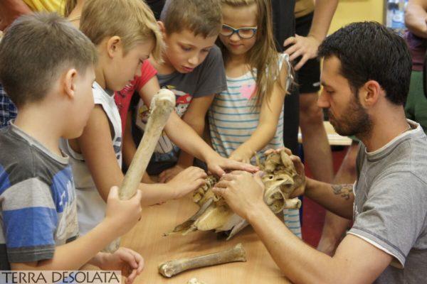 Warsztaty dla dzieci z archeozoologii