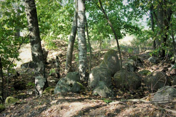 cmentarzysko w Pokrzywnicy Wielkiej